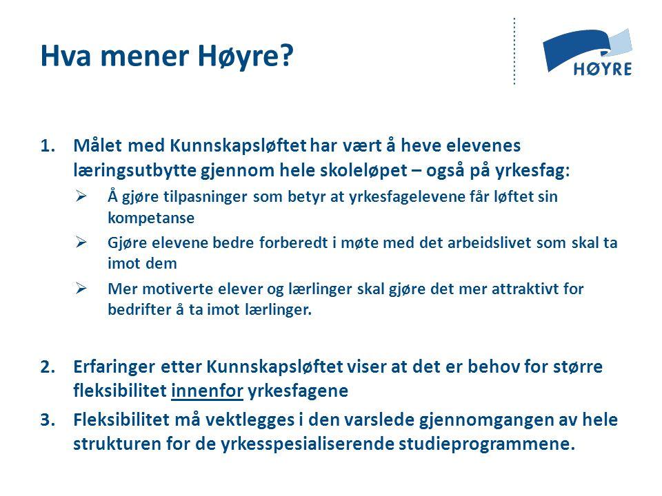 Hva mener Høyre.