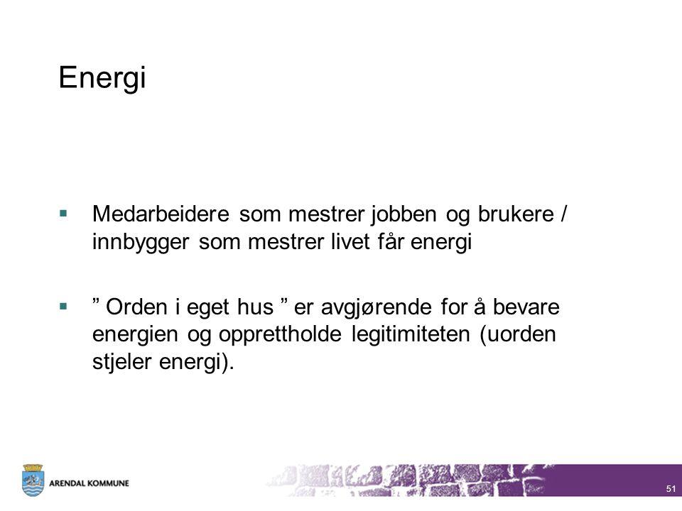 """Energi  Medarbeidere som mestrer jobben og brukere / innbygger som mestrer livet får energi  """" Orden i eget hus """" er avgjørende for å bevare energie"""