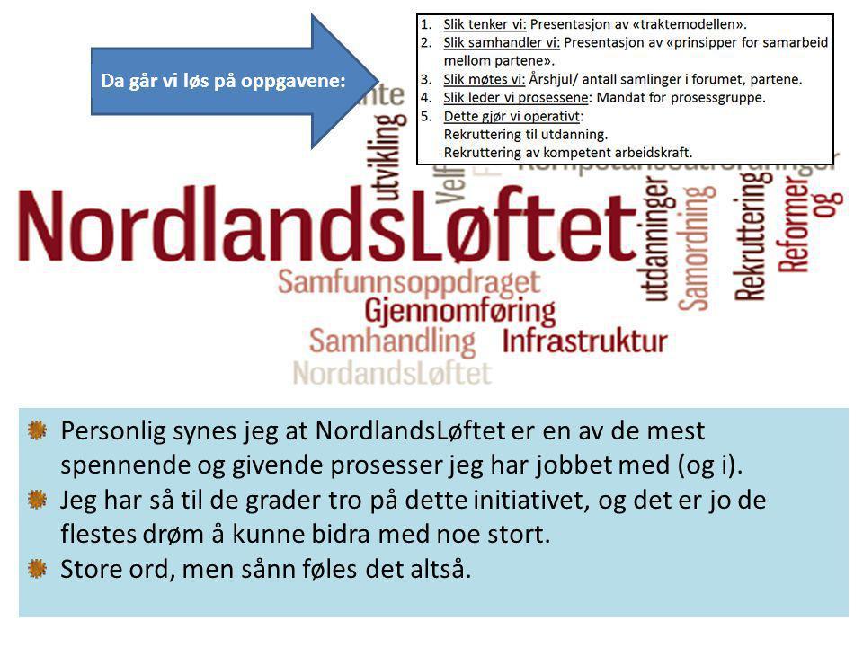 Personlig synes jeg at NordlandsLøftet er en av de mest spennende og givende prosesser jeg har jobbet med (og i).