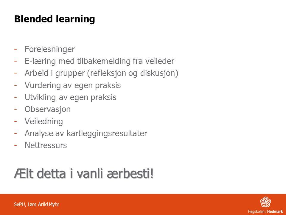 Blended learning -Forelesninger -E-læring med tilbakemelding fra veileder -Arbeid i grupper (refleksjon og diskusjon) -Vurdering av egen praksis -Utvi