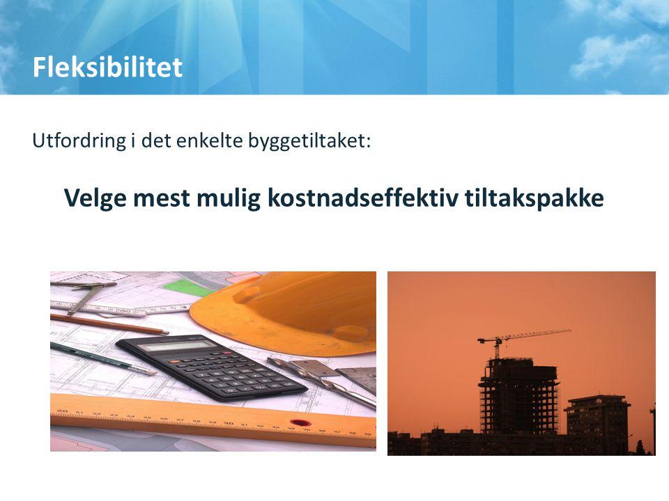 Fleksibilitet Utfordring i det enkelte byggetiltaket: Velge mest mulig kostnadseffektiv tiltakspakke18