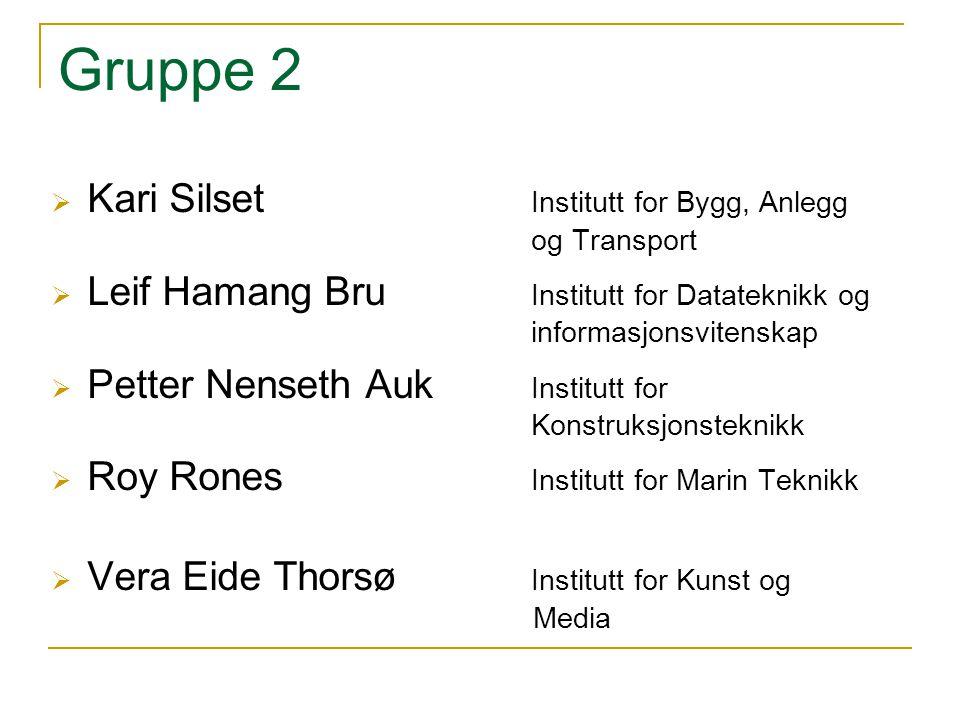 Gruppe 2  Kari Silset Institutt for Bygg, Anlegg og Transport  Leif Hamang Bru Institutt for Datateknikk og informasjonsvitenskap  Petter Nenseth A