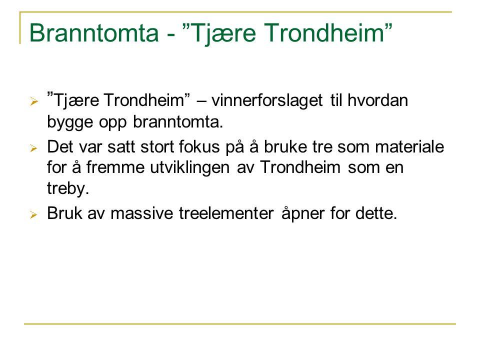 """Branntomta - """"Tjære Trondheim""""  """" Tjære Trondheim"""" – vinnerforslaget til hvordan bygge opp branntomta.  Det var satt stort fokus på å bruke tre som"""