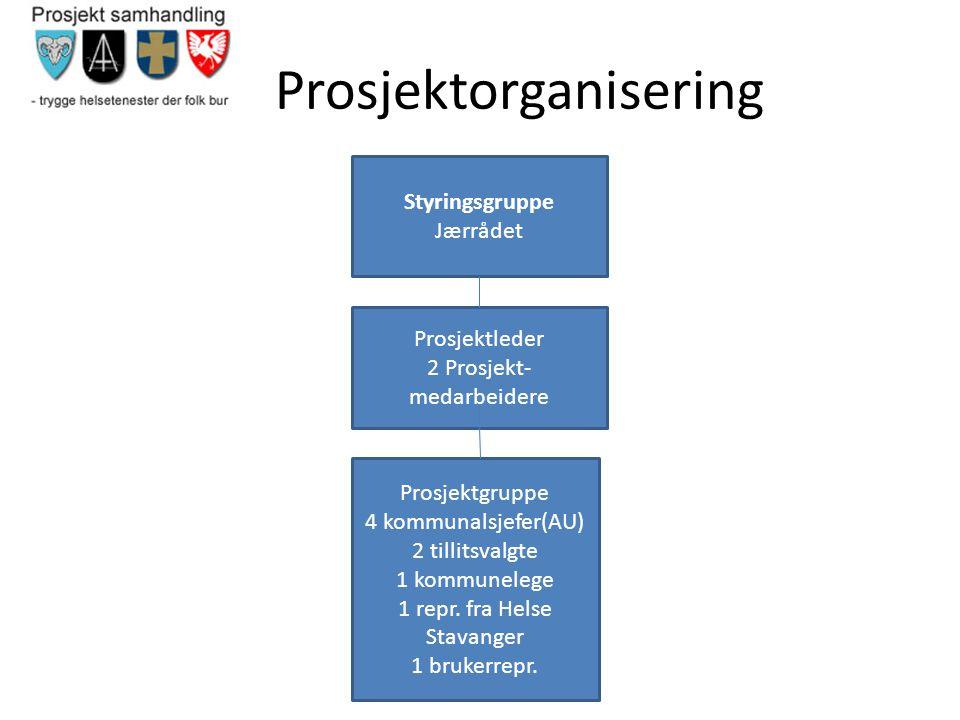 Prosjektorganisering Styringsgruppe Jærrådet Prosjektleder 2 Prosjekt- medarbeidere Prosjektgruppe 4 kommunalsjefer(AU) 2 tillitsvalgte 1 kommunelege