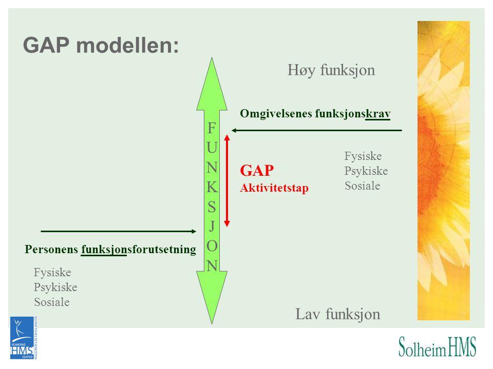 GAP modellen: Høy funksjon Lav funksjon Personens funksjonsforutsetning Omgivelsenes funksjonskrav Fysiske Psykiske Sosiale Fysiske Psykiske Sosiale F