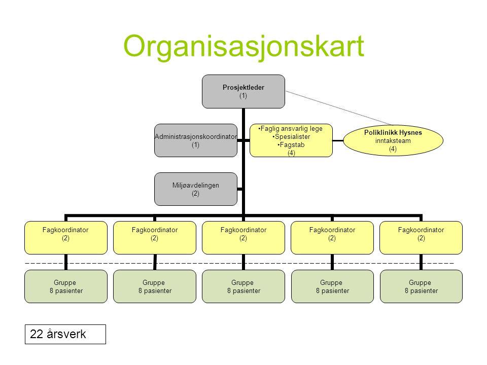 Organisasjonskart Poliklinikk Hysnes inntaksteam (4) 22 årsverk
