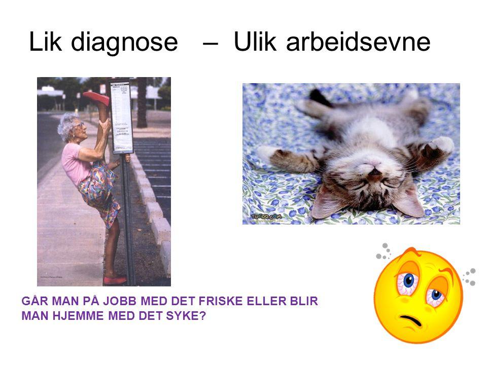 Helse forts.•Peter Hjort: Helse er å ha overskudd i forhold til hverdagens krav.