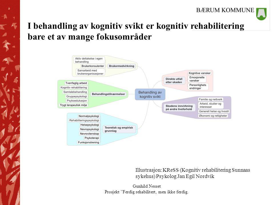 """Gunhild Nesset Prosjekt """"Ferdig rehabilitert, men ikke ferdig. Illustrasjon: KReSS (Kognitiv rehabilitering Sunnaas sykehus) Psykolog Jan Egil Nordvik"""
