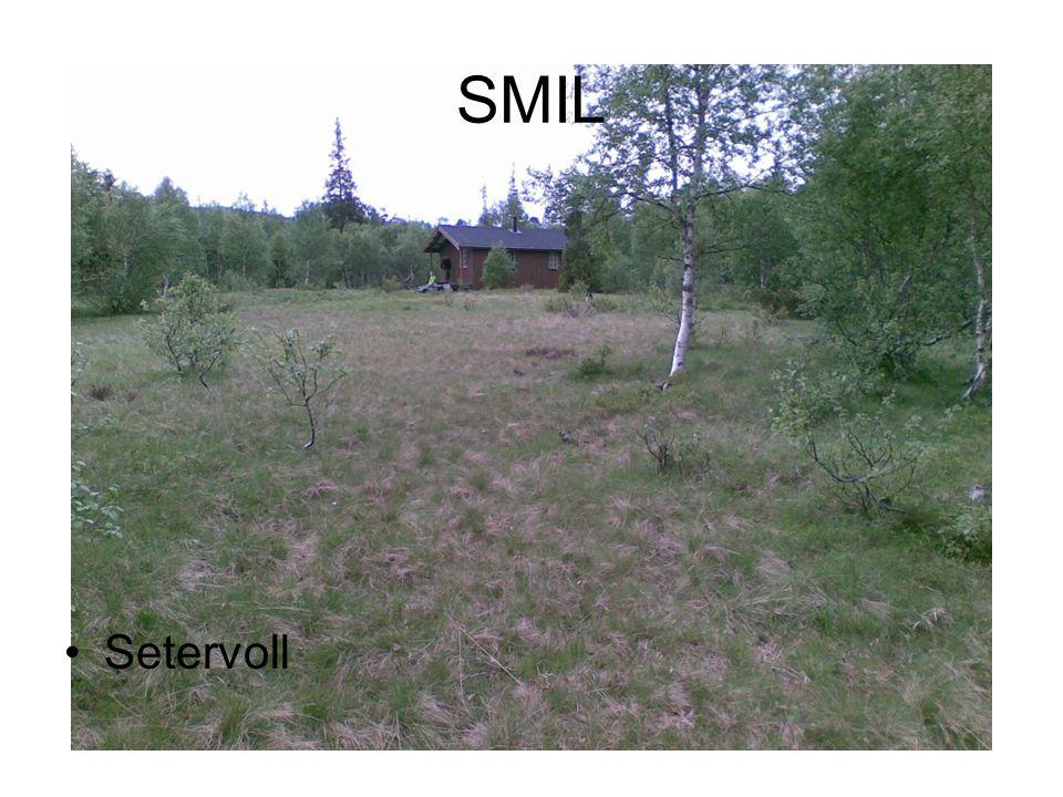 SMIL •Setervoll