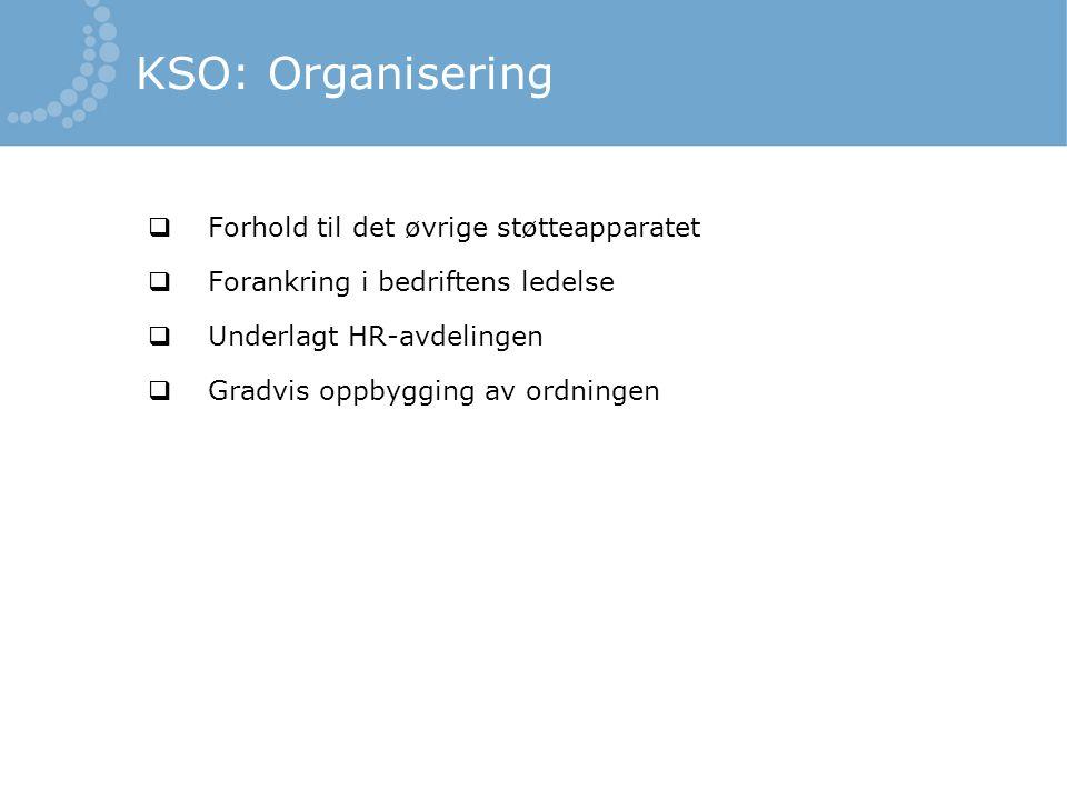  Forhold til det øvrige støtteapparatet  Forankring i bedriftens ledelse  Underlagt HR-avdelingen  Gradvis oppbygging av ordningen KSO: Organiseri