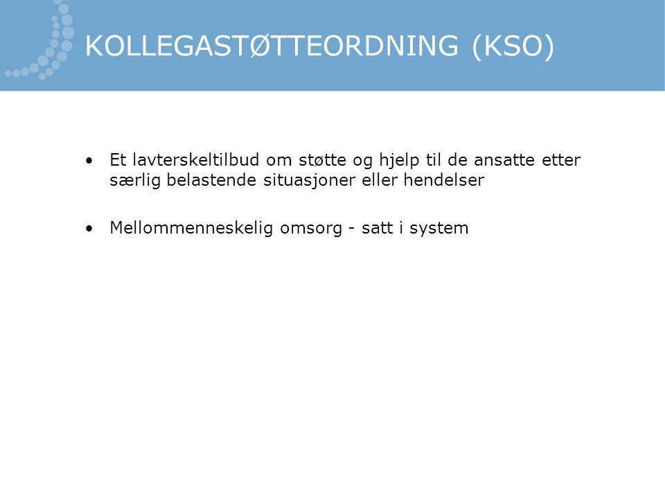 Evaluering av KSO •Lite empirisk materiale fra utprøving av KSO i Norge •Evaluering av KSO ved Sykehuset i Vestfold - registrering av aktivitet - evaluering i 2007 - evaluering i 2013
