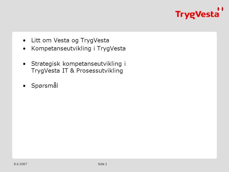 8.6.2007 Side 2 •Litt om Vesta og TrygVesta •Kompetanseutvikling i TrygVesta •Strategisk kompetanseutvikling i TrygVesta IT & Prosessutvikling •Spørsm