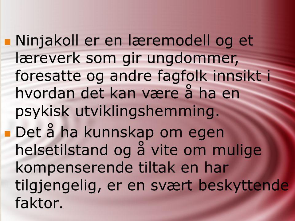 NINJAKOLL Utviklet av:  Ala / FUB`s Forskningsstiftelse med Cecilia Olsson som prosjektleder  Oversatt til norsk, Helse Fonna, Team for barnehabilitering.