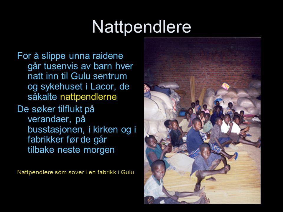 Nattpendlere For å slippe unna raidene går tusenvis av barn hver natt inn til Gulu sentrum og sykehuset i Lacor, de såkalte nattpendlerne De søker til