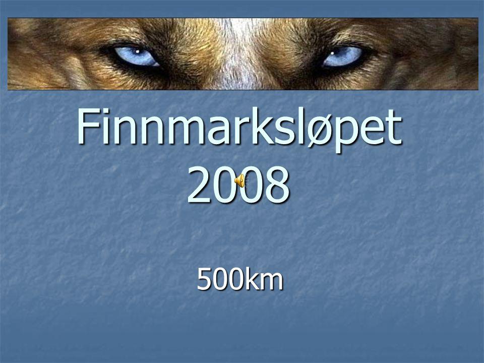 Finnmarksløpet 2008 500km