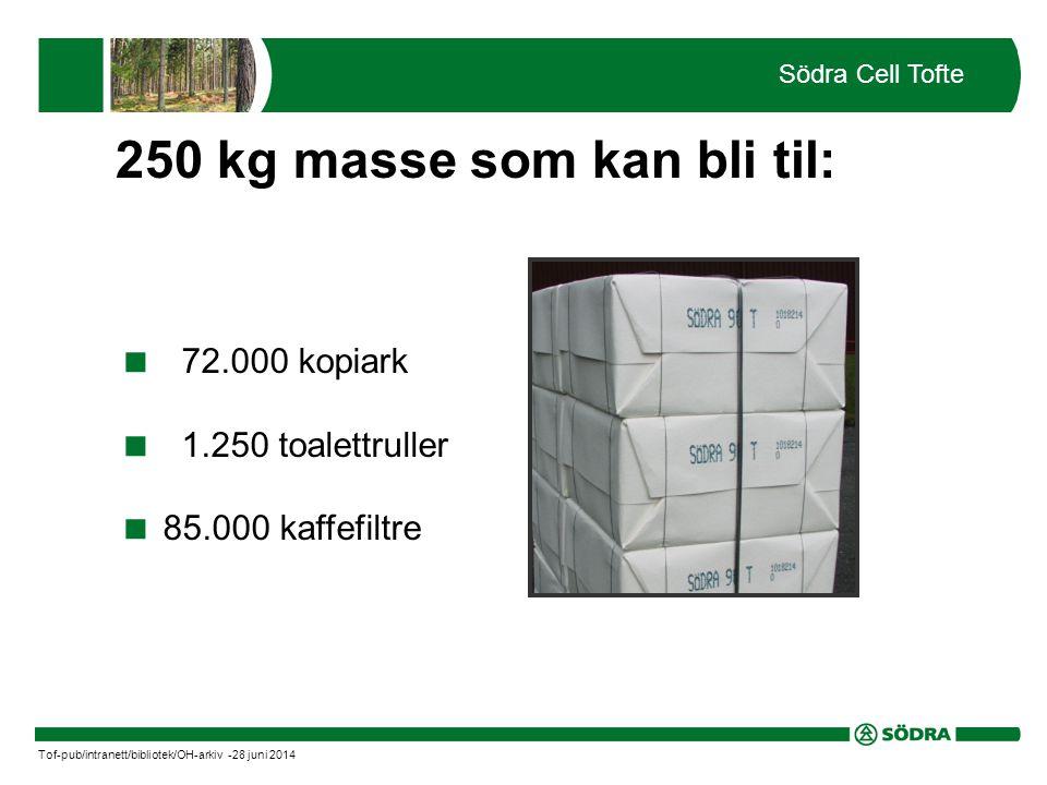  72.000 kopiark  1.250 toalettruller  85.000 kaffefiltre Södra Cell Tofte Tof-pub/intranett/bibliotek/OH-arkiv -28 juni 2014 250 kg masse som kan bli til: