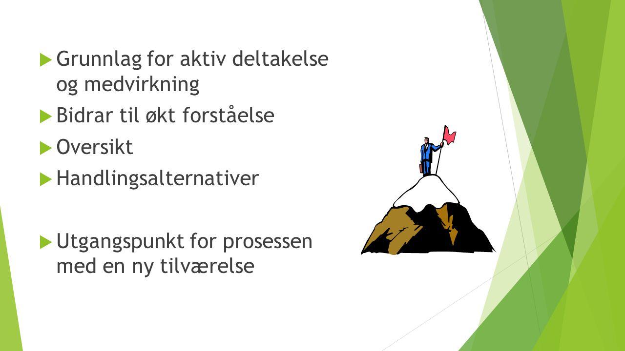  Grunnlag for aktiv deltakelse og medvirkning  Bidrar til økt forståelse  Oversikt  Handlingsalternativer  Utgangspunkt for prosessen med en ny t