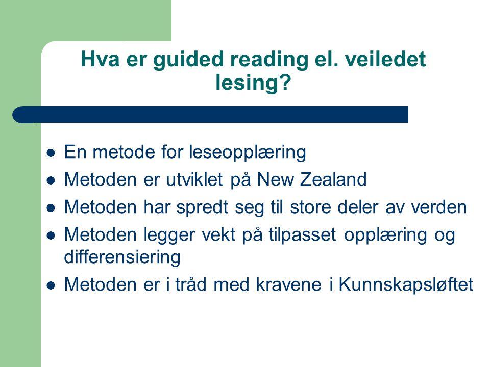 De fem ferdighetene beskrevet i språkpermen  Lytteforståelse  Leseforståelse  Snakke med andre  Snakke  Skrive