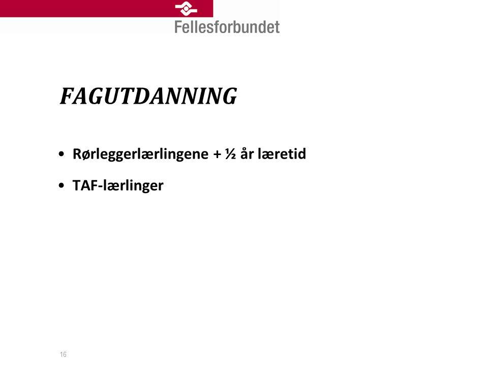 16 •Rørleggerlærlingene + ½ år læretid •TAF-lærlinger FAGUTDANNING