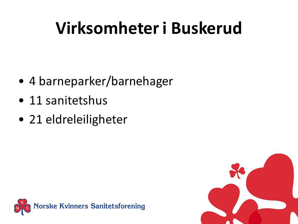 Virksomheter i Buskerud •4 barneparker/barnehager •11 sanitetshus •21 eldreleiligheter