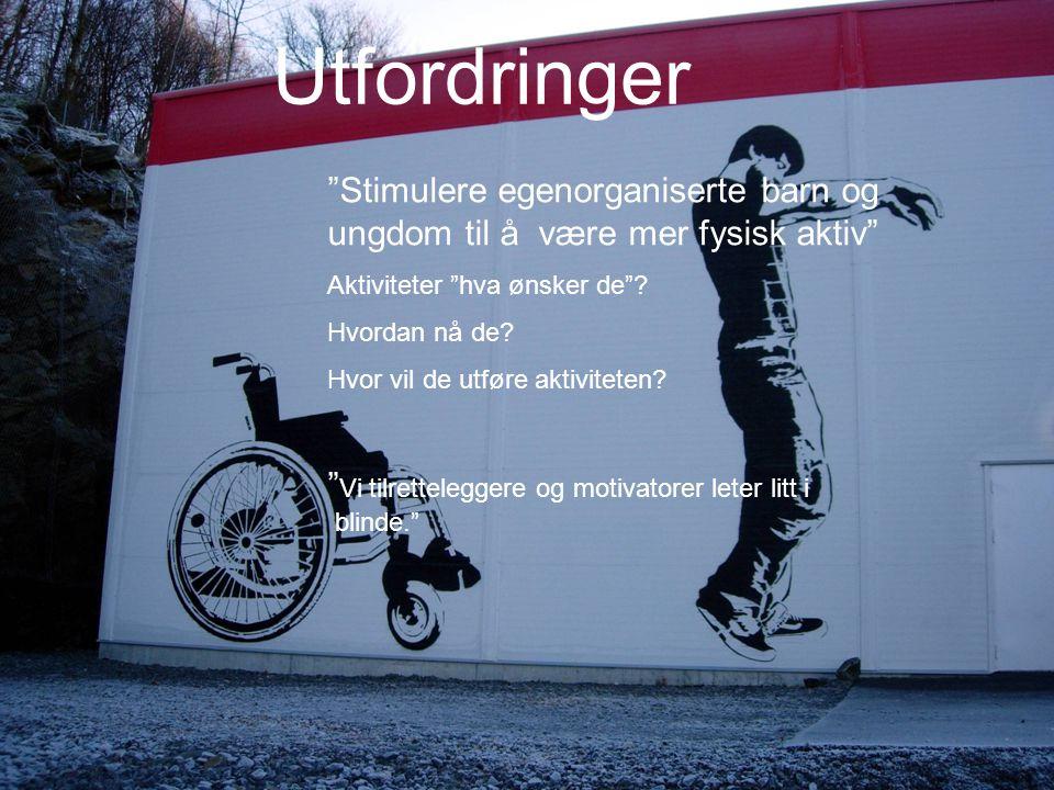 """© Bergen kommune Utfordringer """"Stimulere egenorganiserte barn og ungdom til å være mer fysisk aktiv"""" Aktiviteter """"hva ønsker de""""? Hvordan nå de? Hvor"""