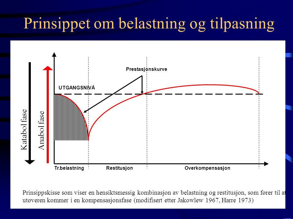 Grunnlegende treningsprinsipper •Prinsippet om belastning / tilpasning •Prinsippet om spesifisitet •Prinsippet om progresjon •Blokkprinsippet •Prinsip