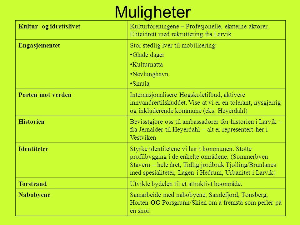 Muligheter Kultur- og idrettslivetKulturforeningene – Profesjonelle, eksterne aktører.