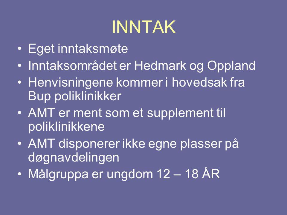 INNTAK •Eget inntaksmøte •Inntaksområdet er Hedmark og Oppland •Henvisningene kommer i hovedsak fra Bup poliklinikker •AMT er ment som et supplement t