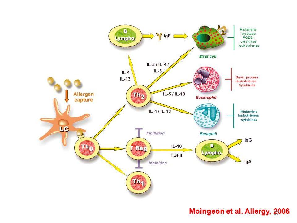 33 Moingeon et al. Allergy, 2006 33