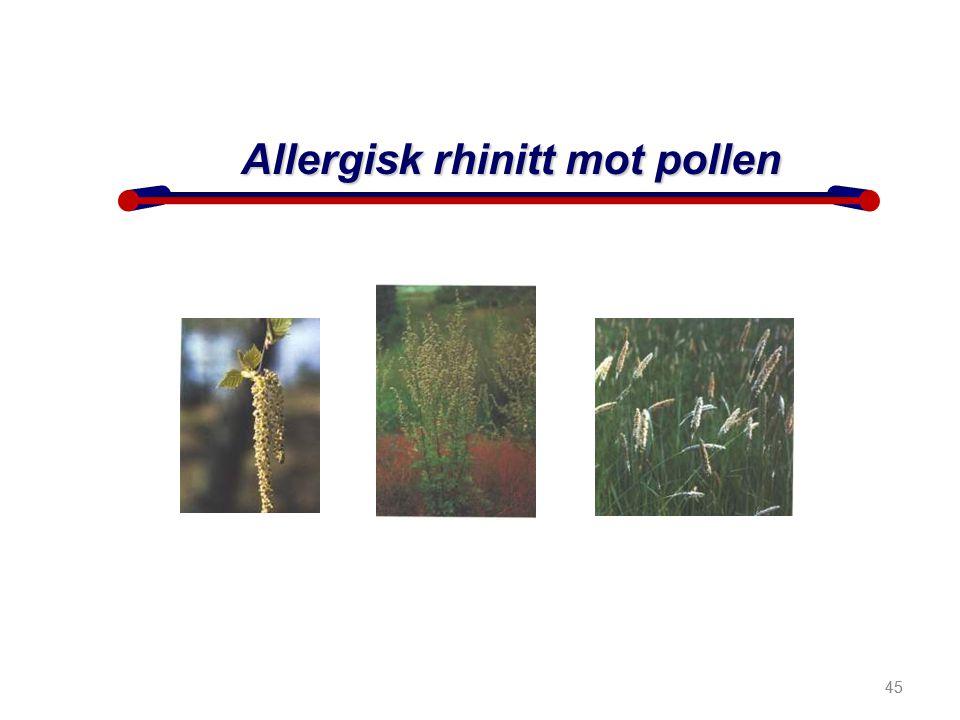 45 Allergisk rhinitt mot pollen 45