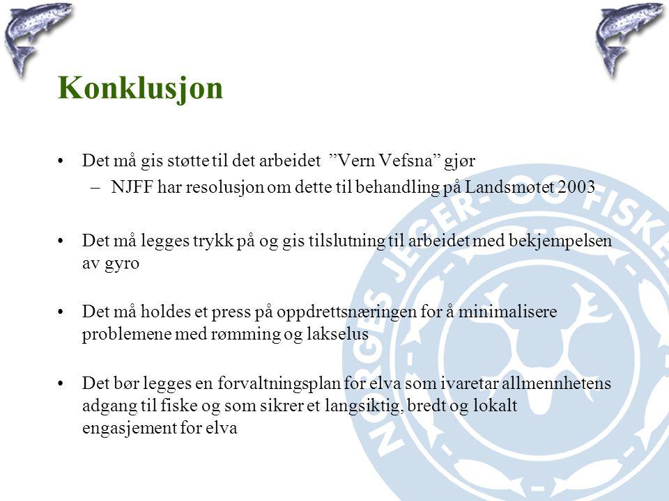 """Konklusjon •Det må gis støtte til det arbeidet """"Vern Vefsna"""" gjør –NJFF har resolusjon om dette til behandling på Landsmøtet 2003 •Det må legges trykk"""