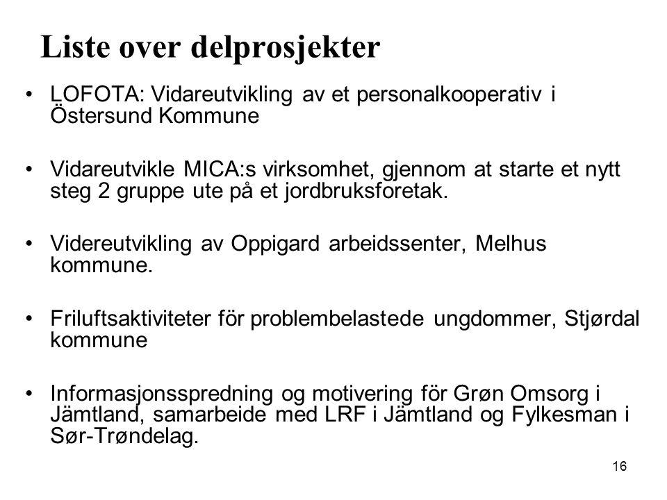 16 Liste over delprosjekter •LOFOTA: Vidareutvikling av et personalkooperativ i Östersund Kommune •Vidareutvikle MICA:s virksomhet, gjennom at starte et nytt steg 2 gruppe ute på et jordbruksforetak.