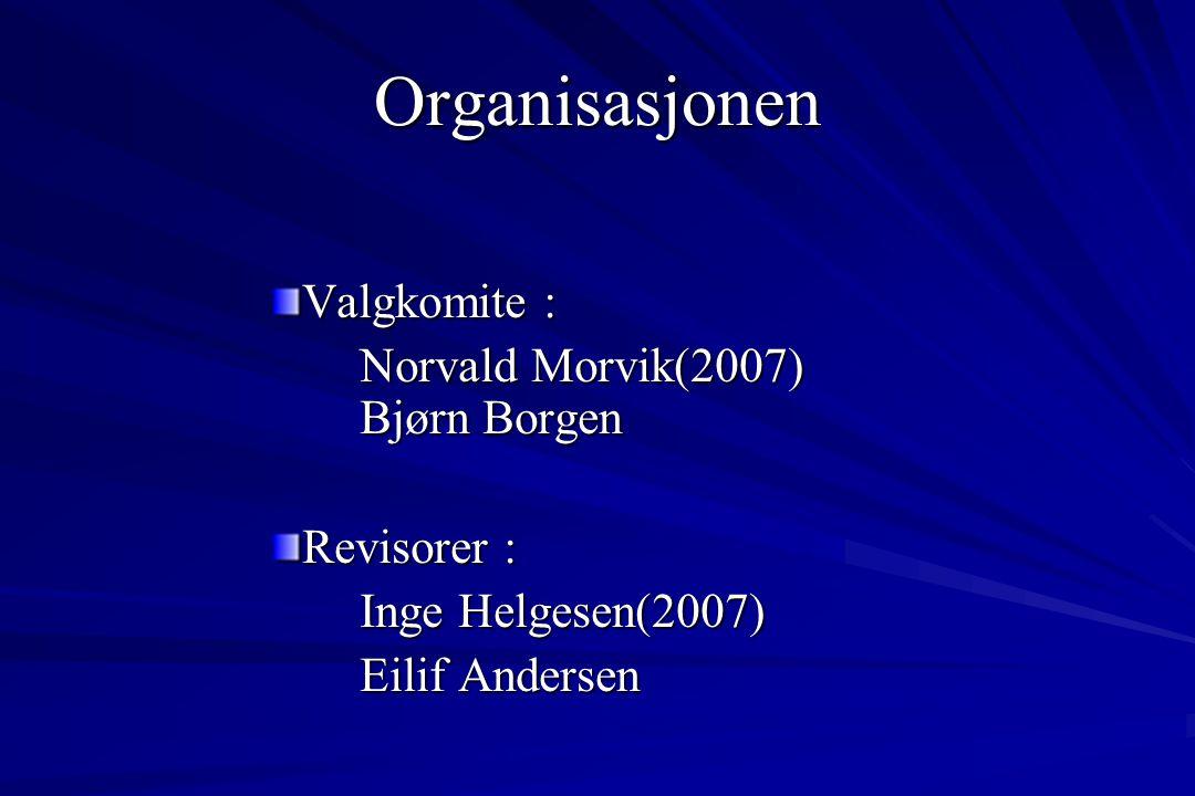 Valgkomite : Norvald Morvik(2007) Bjørn Borgen Revisorer : Inge Helgesen(2007) Eilif Andersen Organisasjonen