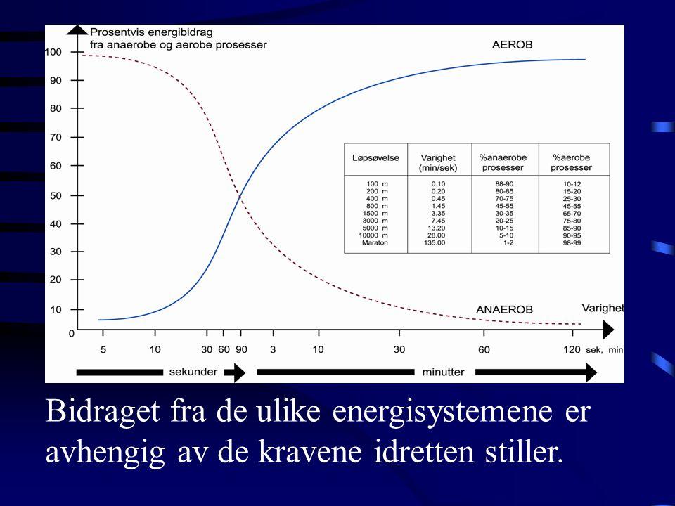 Bidraget fra de ulike energisystemene er avhengig av de kravene idretten stiller.