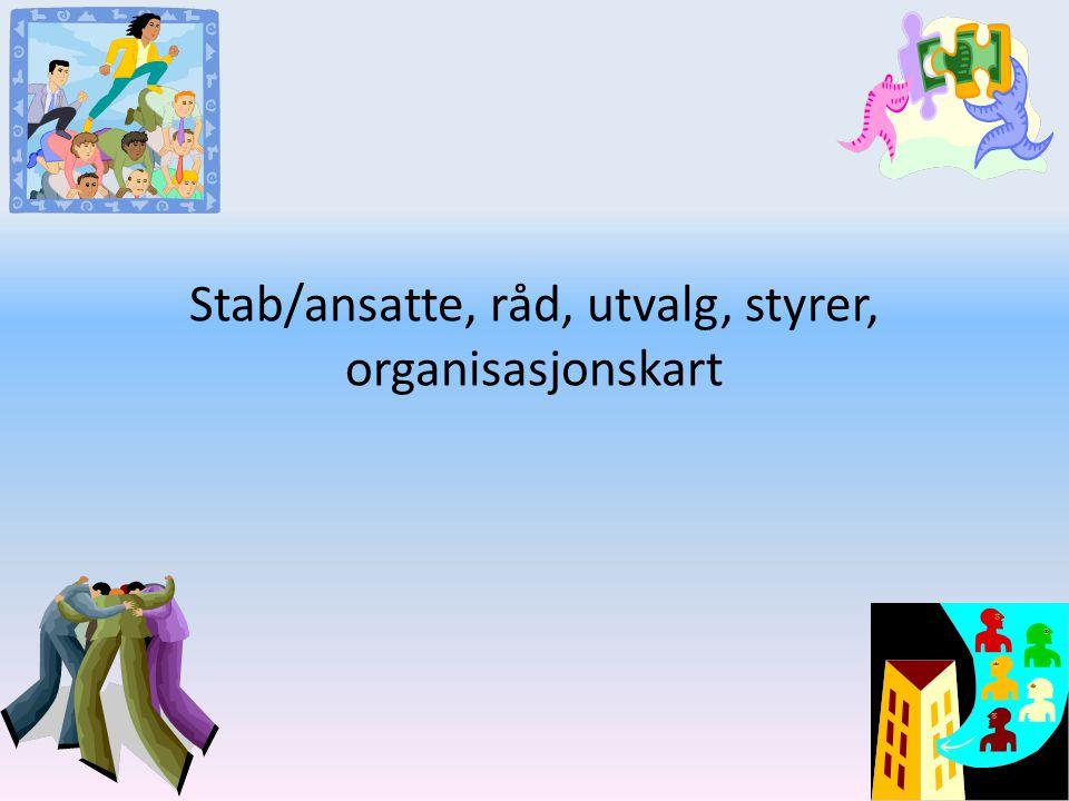 Stab/ansatte, råd, utvalg, styrer, organisasjonskart
