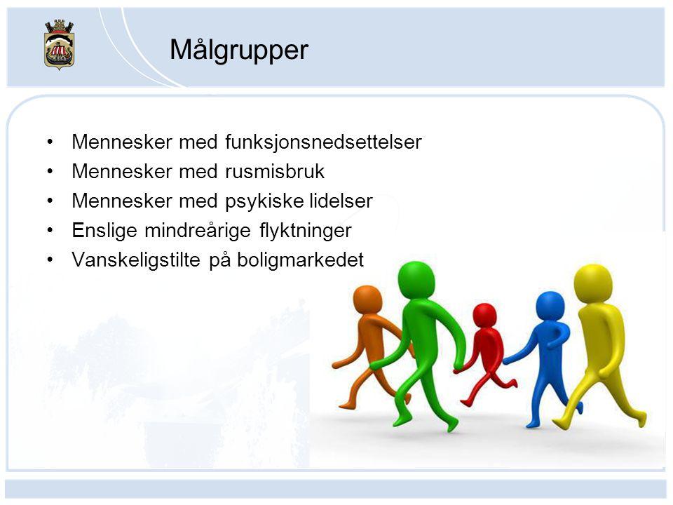 Målgrupper •Mennesker med funksjonsnedsettelser •Mennesker med rusmisbruk •Mennesker med psykiske lidelser •Enslige mindreårige flyktninger •Vanskelig