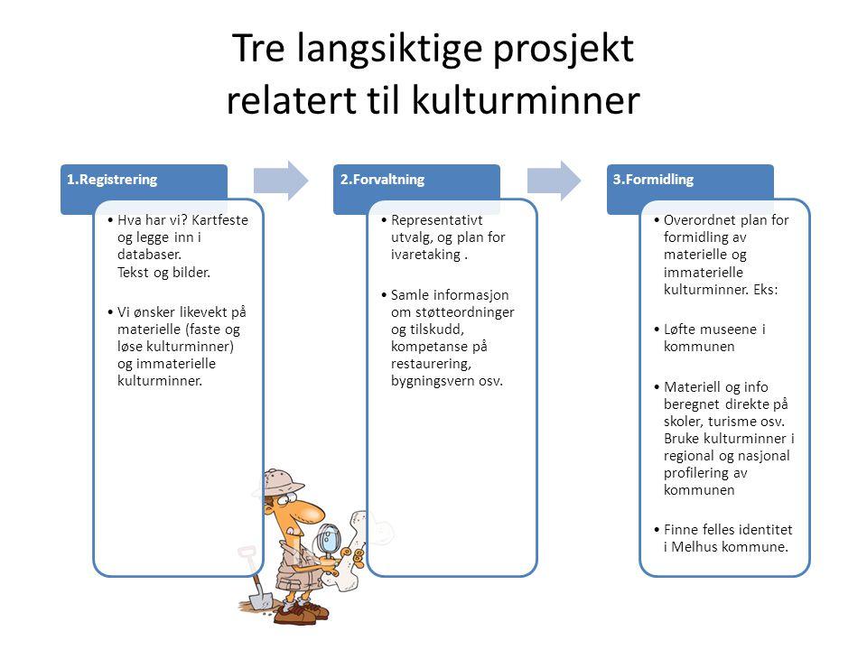 Tre faser i prosjekt 1: Registrering 1.Soneinndeling, status og prognoser 2.