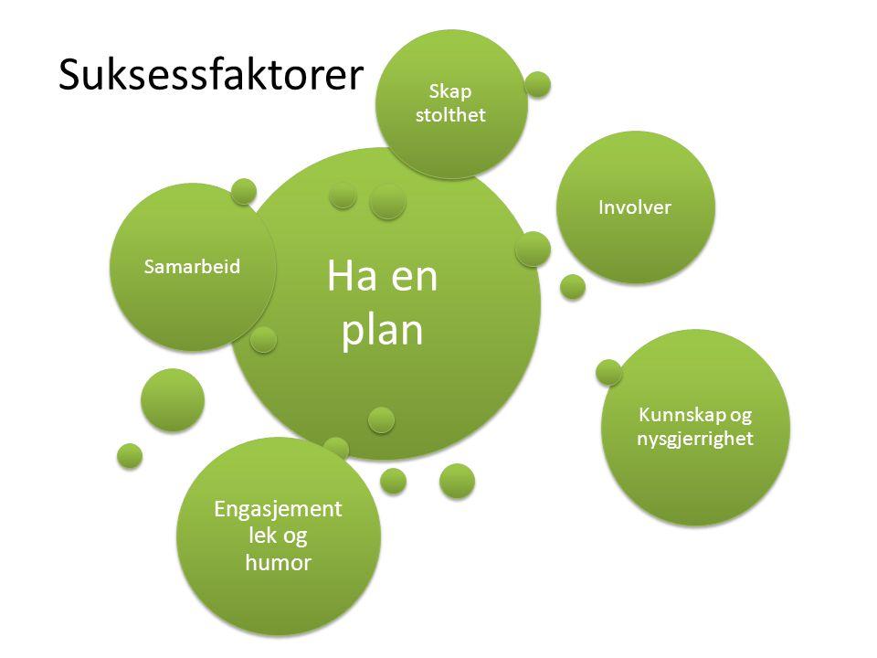 Suksessfaktorer Ha en plan Samarbeid Involver Kunnskap og nysgjerrighet Engasjement lek og humor Skap stolthet