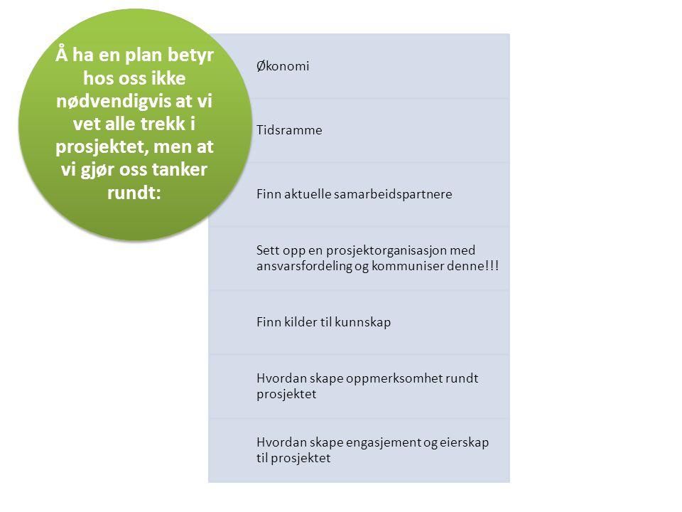 Økonomi Tidsramme Finn aktuelle samarbeidspartnere Sett opp en prosjektorganisasjon med ansvarsfordeling og kommuniser denne!!! Finn kilder til kunnsk