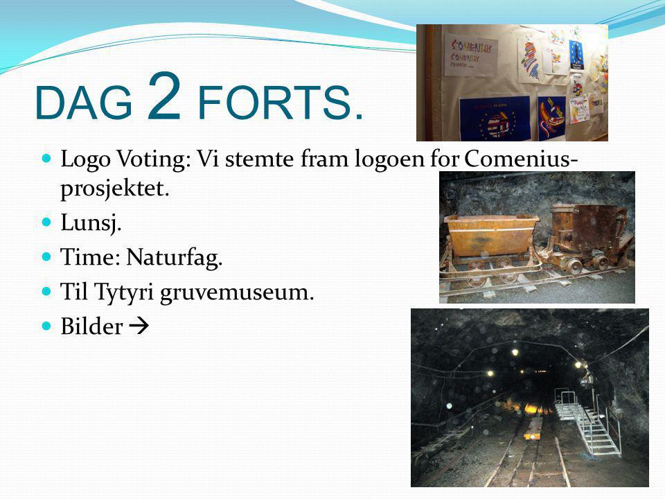 DAG 2 FORTS. Logo Voting: Vi stemte fram logoen for Comenius- prosjektet.