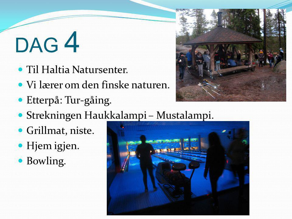 DAG 4  Til Haltia Natursenter. Vi lærer om den finske naturen.