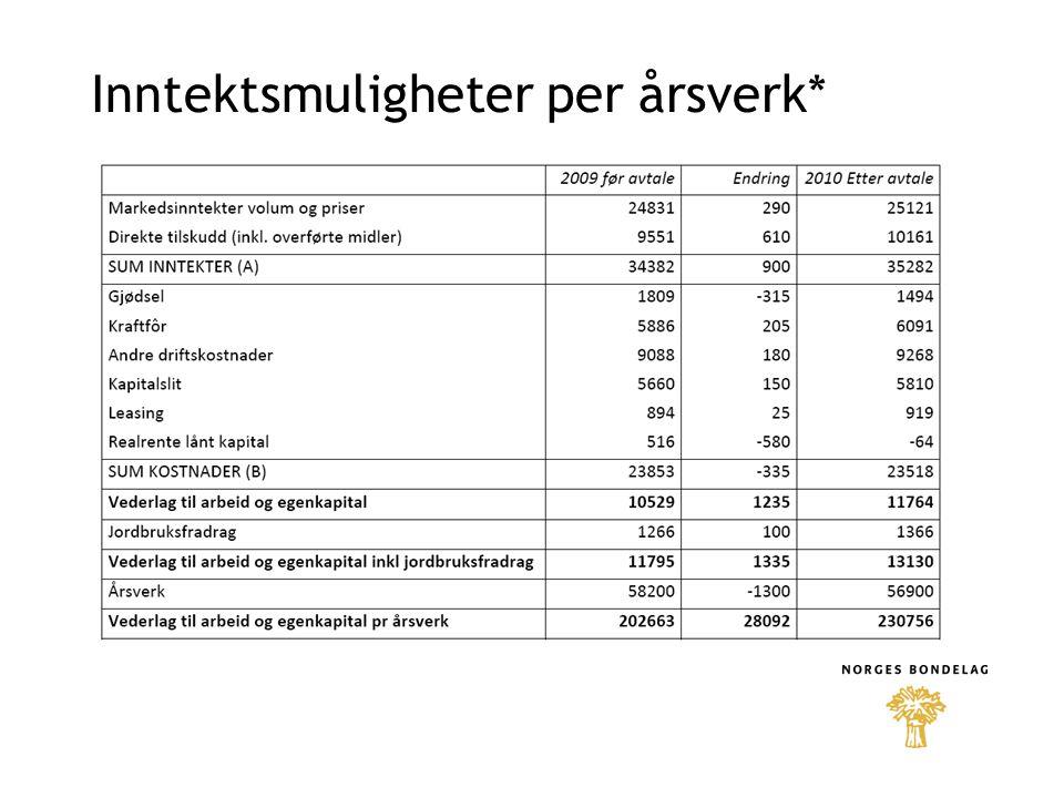 Inntektsmuligheter per årsverk*