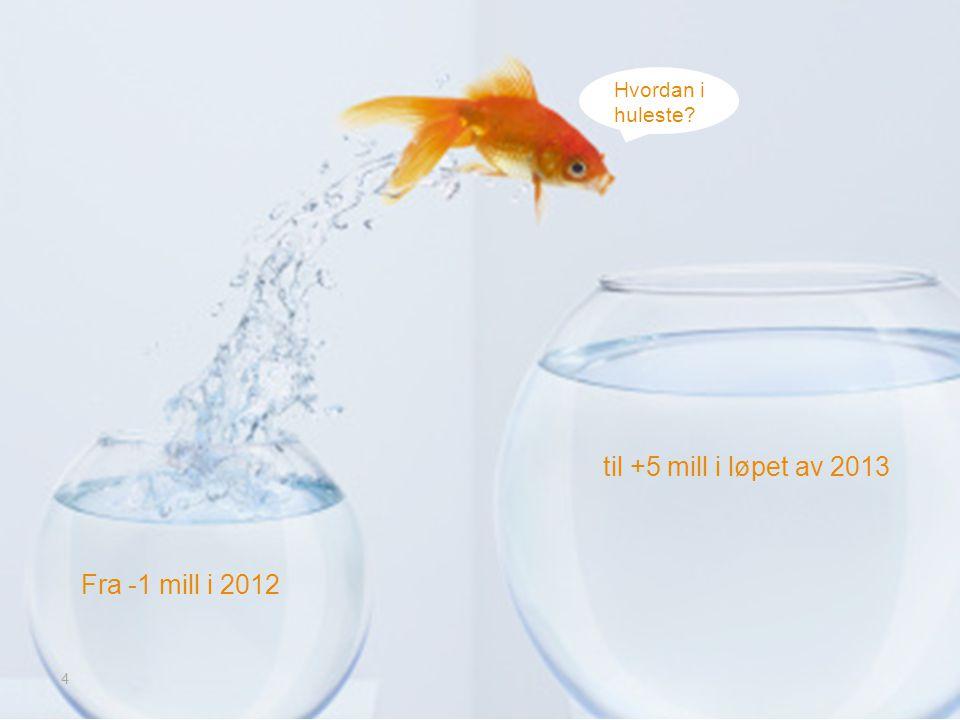 Fra -1 mill i 2012 4 Hvordan i huleste? til +5 mill i løpet av 2013