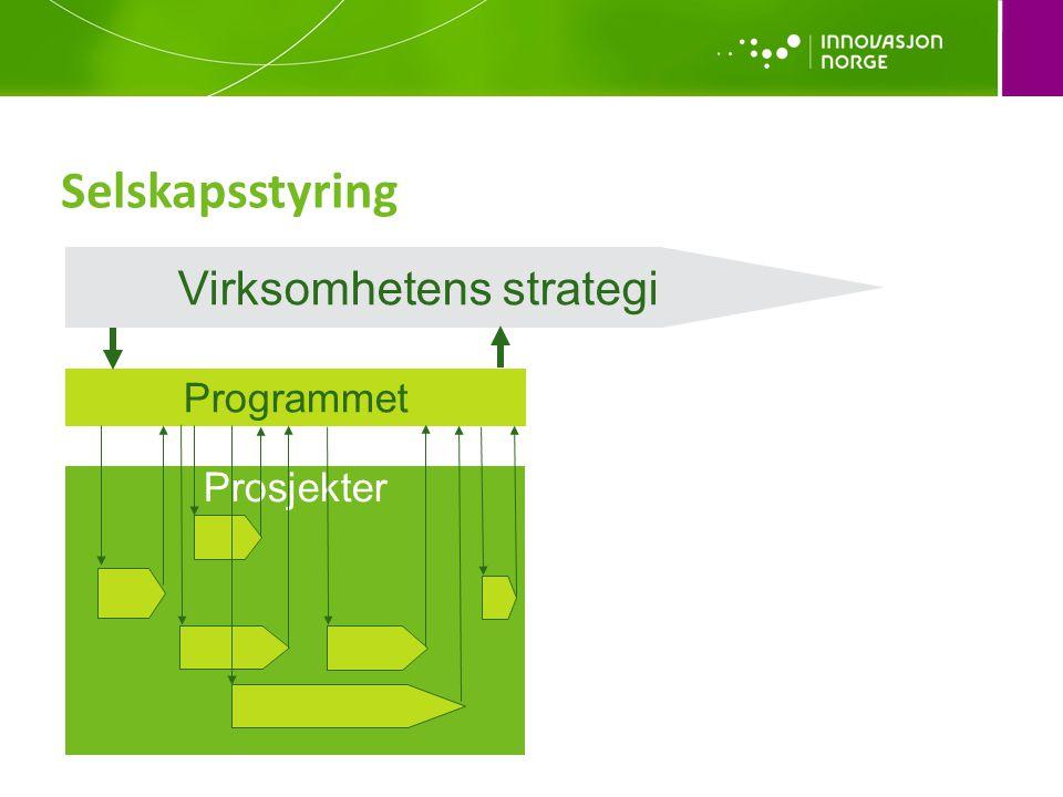 Selskapsstyring Virksomhetens strategi Programmet Prosjekter