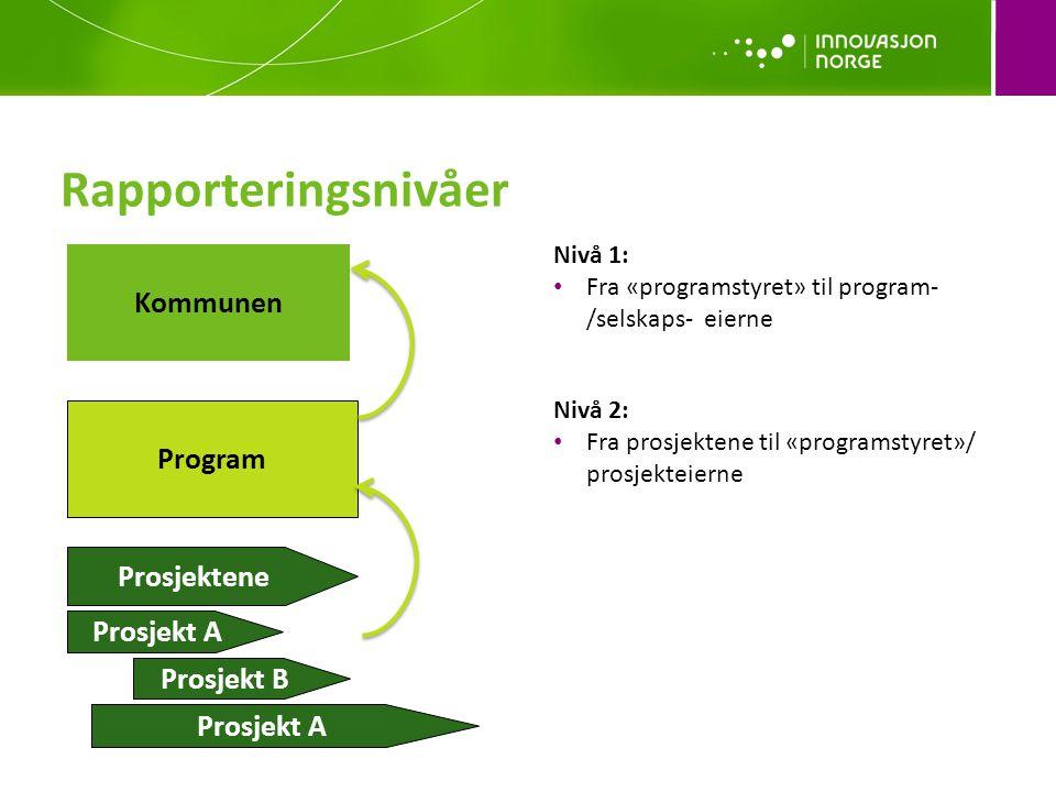 Rapporteringsnivåer Nivå 2: • Fra prosjektene til «programstyret»/ prosjekteierne Nivå 1: • Fra «programstyret» til program- /selskaps- eierne Kommunen Program Prosjektene Prosjekt A Prosjekt B Prosjekt A