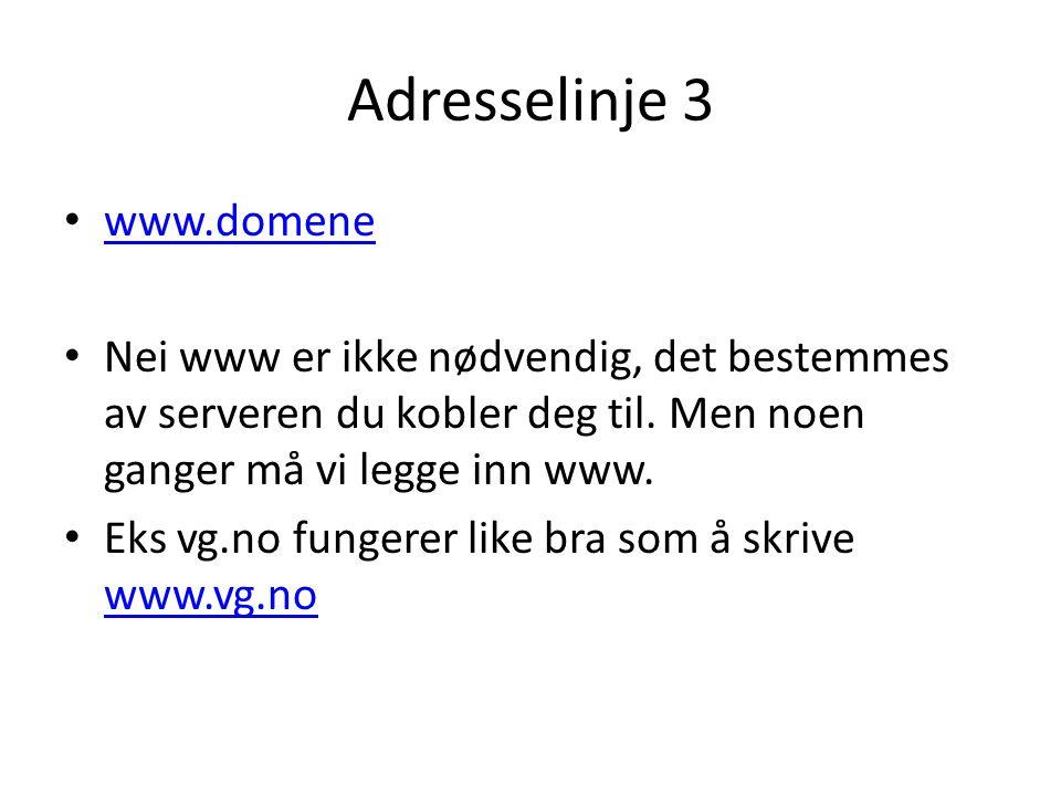 Adresselinje 3 • www.domene www.domene • Nei www er ikke nødvendig, det bestemmes av serveren du kobler deg til.