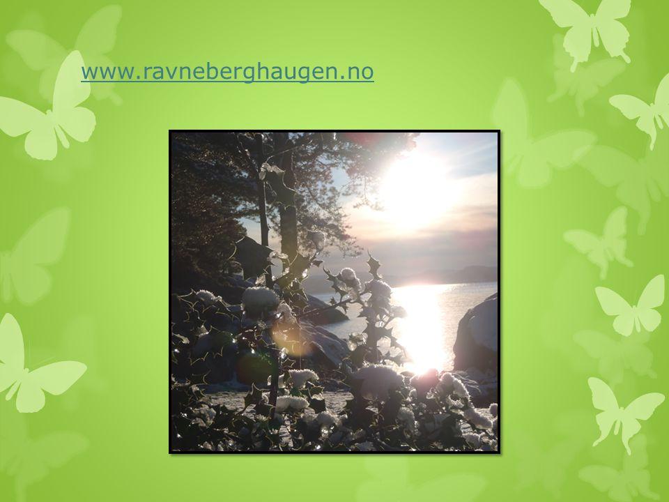 www.ravneberghaugen.no