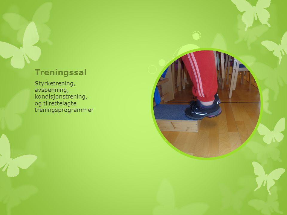 Treningssal Styrketrening, avspenning, kondisjonstrening, og tilrettelagte treningsprogrammer
