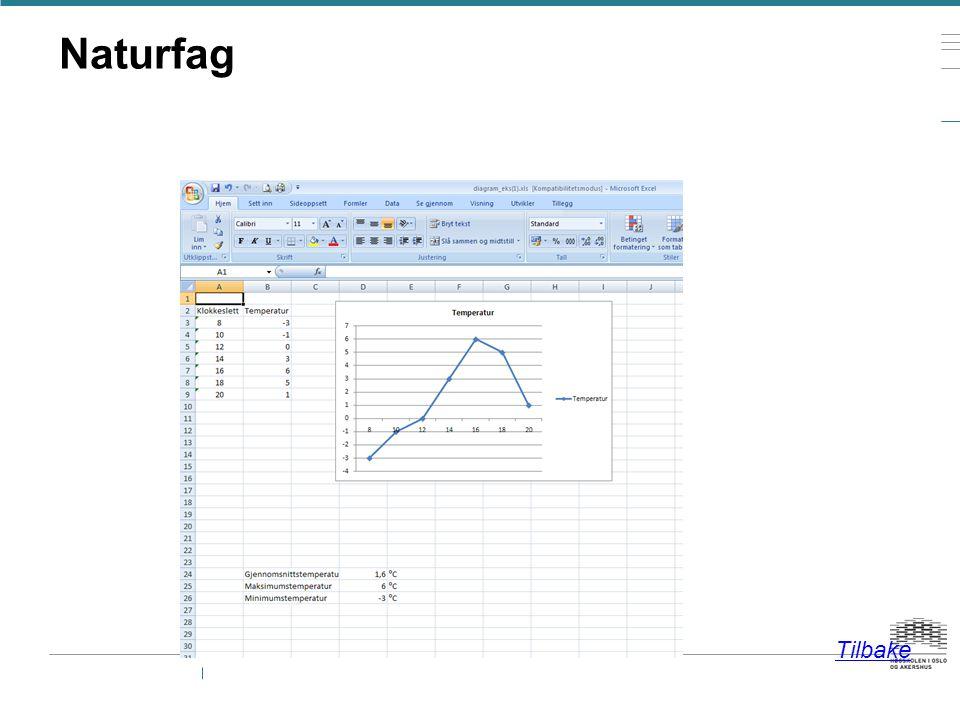 Grafisk framstilling - Ulike diagramtyper (stolpe, sektor, lineær….) — Hvor mange elever var ute og spiste.
