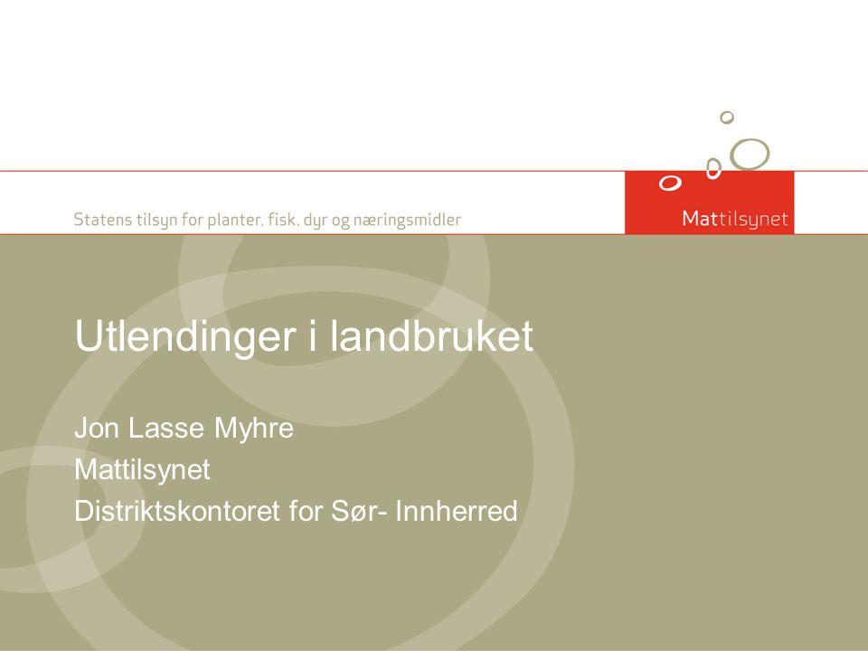 Utlendinger i landbruket Jon Lasse Myhre Mattilsynet Distriktskontoret for Sør- Innherred